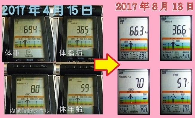 20170813カラダスキャンログ.jpg