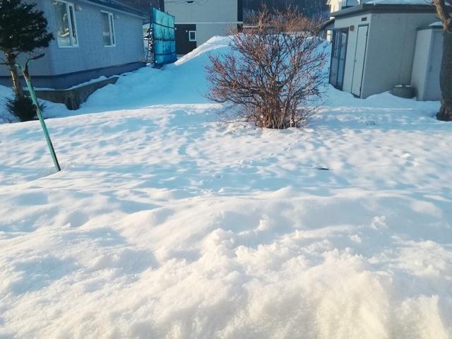 20180318庭の雪.jpg