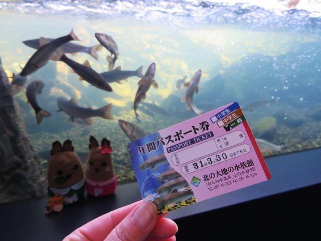 201803北の大地の水族館 年間パスポート.jpg