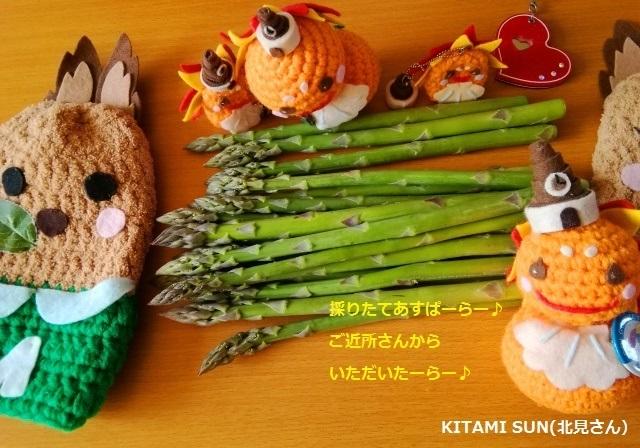 20180422 KITAMI SUN(北見さん)とアスパラ.jpg