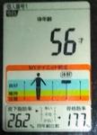 20181208体重たち (4).jpg