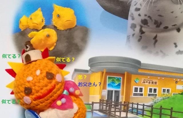 20190108KITAMI SUN(北見さん).jpg