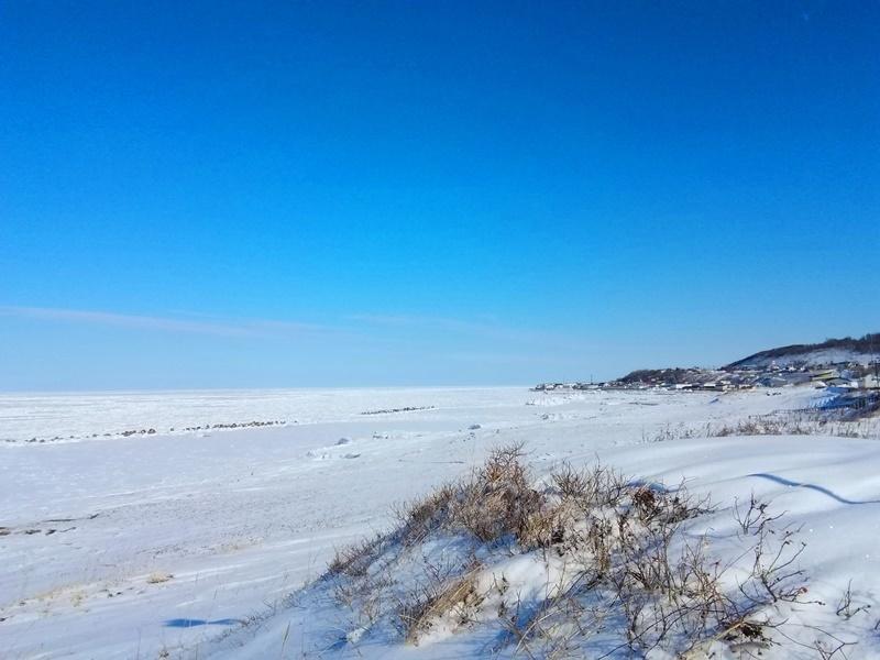 20190213常呂の流氷.jpg