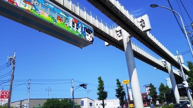 6月23日にょき.JPG