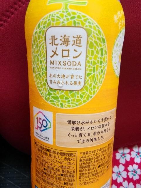 北海道メロンソーダ3.jpg